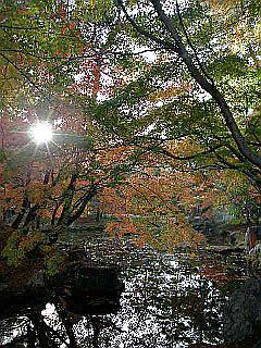 京都某所_c0025217_1505799.jpg