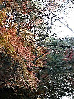 京都某所_c0025217_151590.jpg