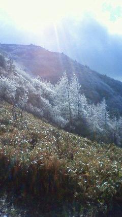 下山日  25 日は霧氷が本当にきれいでした。_c0089831_823815.jpg