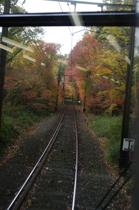 秋写真シリーズ Ⅱ ~叡山電車でGO~_f0152550_21474556.jpg