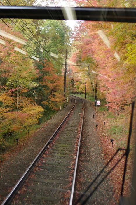 秋写真シリーズ Ⅱ ~叡山電車でGO~_f0152550_21475741.jpg