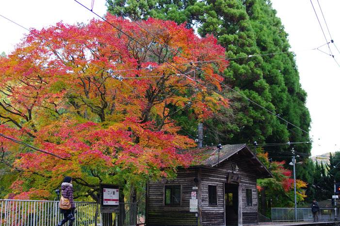 秋写真シリーズ Ⅱ ~叡山電車でGO~_f0152550_2149513.jpg