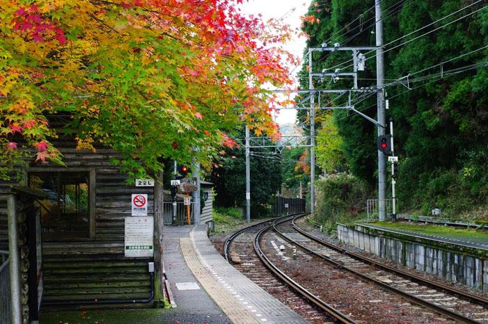 秋写真シリーズ Ⅱ ~叡山電車でGO~_f0152550_21503349.jpg