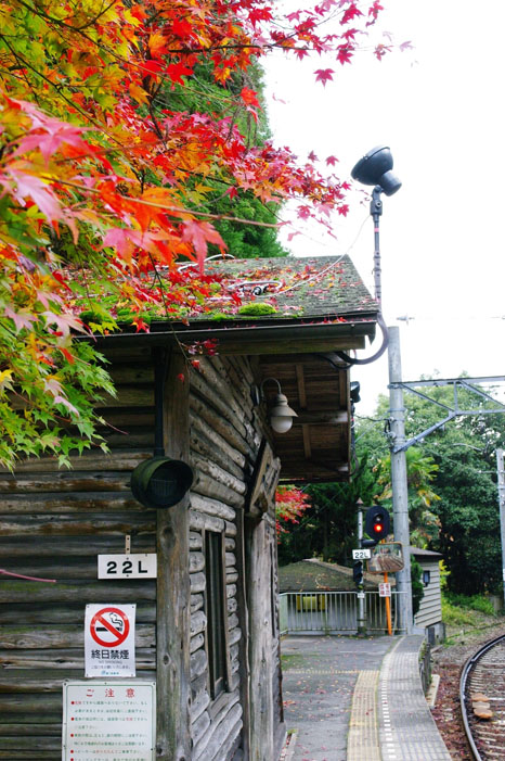 秋写真シリーズ Ⅱ ~叡山電車でGO~_f0152550_21504541.jpg