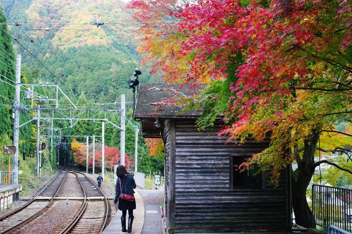 秋写真シリーズ Ⅱ ~叡山電車でGO~_f0152550_21514177.jpg
