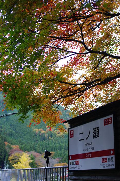 秋写真シリーズ Ⅱ ~叡山電車でGO~_f0152550_21522050.jpg