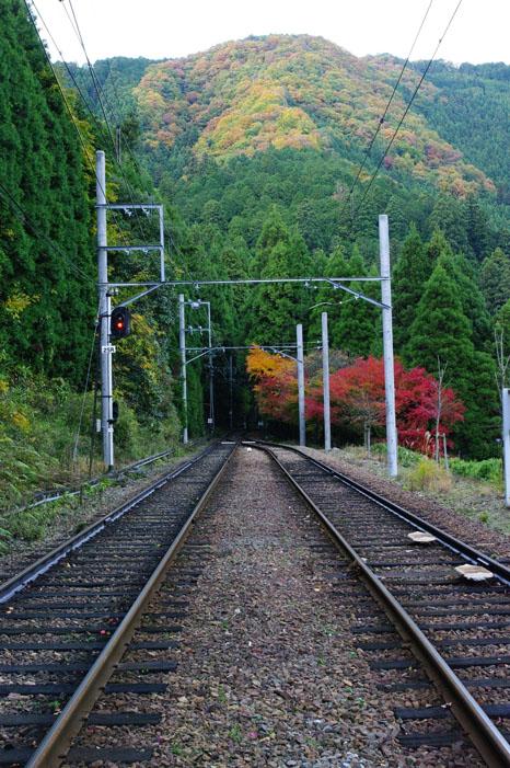 秋写真シリーズ Ⅱ ~叡山電車でGO~_f0152550_21523285.jpg