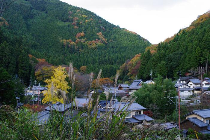 秋写真シリーズ Ⅱ ~叡山電車でGO~_f0152550_21525813.jpg