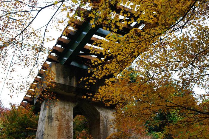秋写真シリーズ Ⅱ ~叡山電車でGO~_f0152550_21551677.jpg
