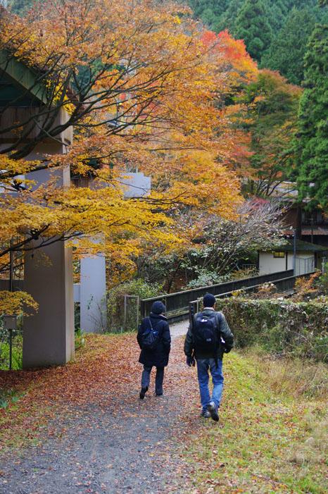 秋写真シリーズ Ⅱ ~叡山電車でGO~_f0152550_21562164.jpg