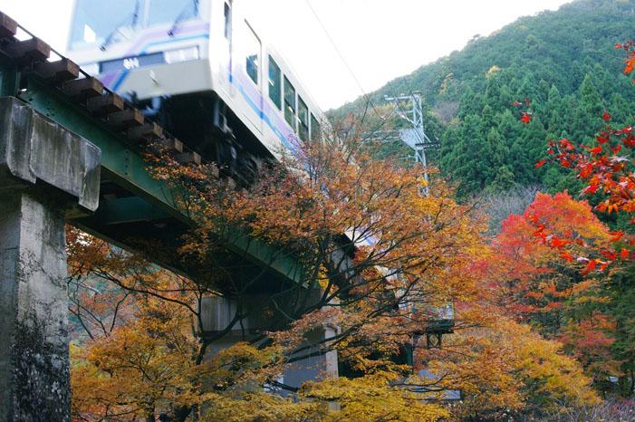 秋写真シリーズ Ⅱ ~叡山電車でGO~_f0152550_21563543.jpg
