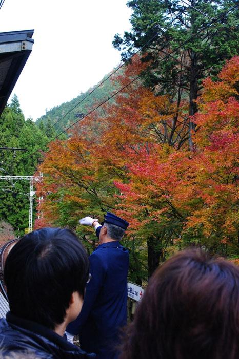 秋写真シリーズ Ⅱ ~叡山電車でGO~_f0152550_21571821.jpg