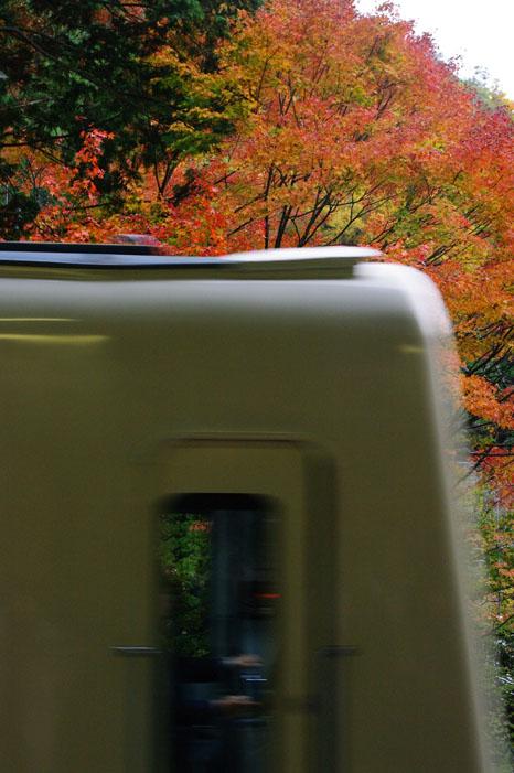 秋写真シリーズ Ⅱ ~叡山電車でGO~_f0152550_2157410.jpg