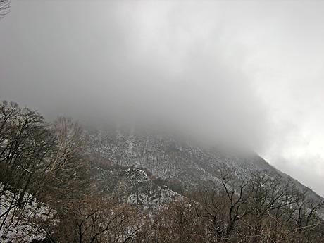11月27日 お山の雪を確かめに・・・_a0001354_18575169.jpg
