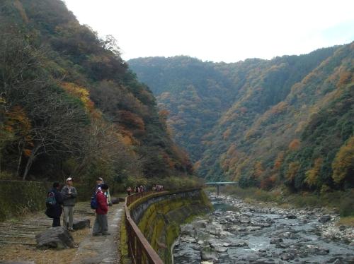 武田尾桜の園「亦楽山荘」紅葉狩り_c0108460_2152838.jpg