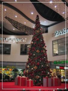 b0156467_18305773.jpg