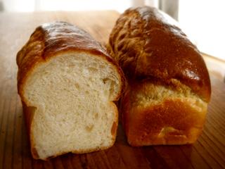 酒粕酵母でミニ食パンとロールパン(卵10% バターなし) _c0110869_1144690.jpg