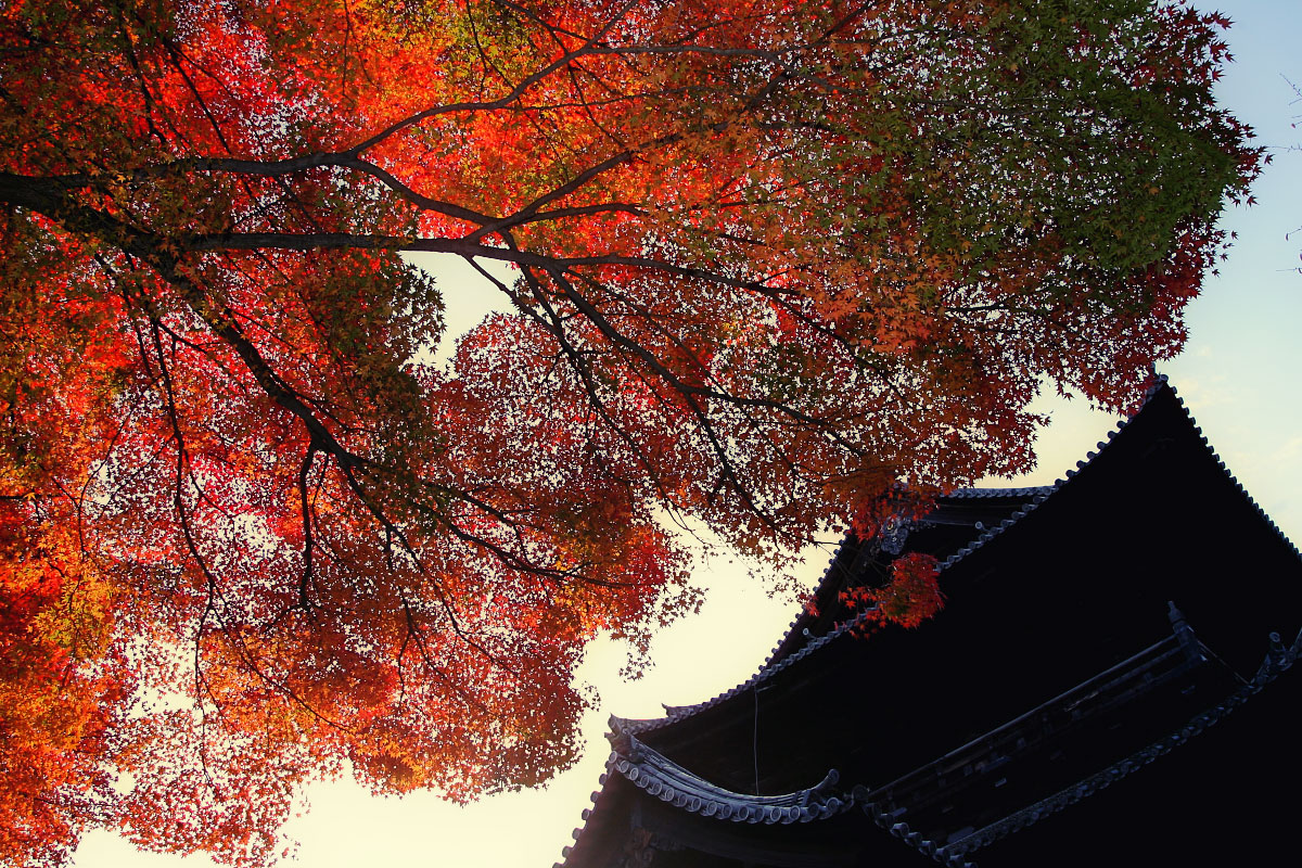 京都 南禅寺 2_f0021869_005182.jpg
