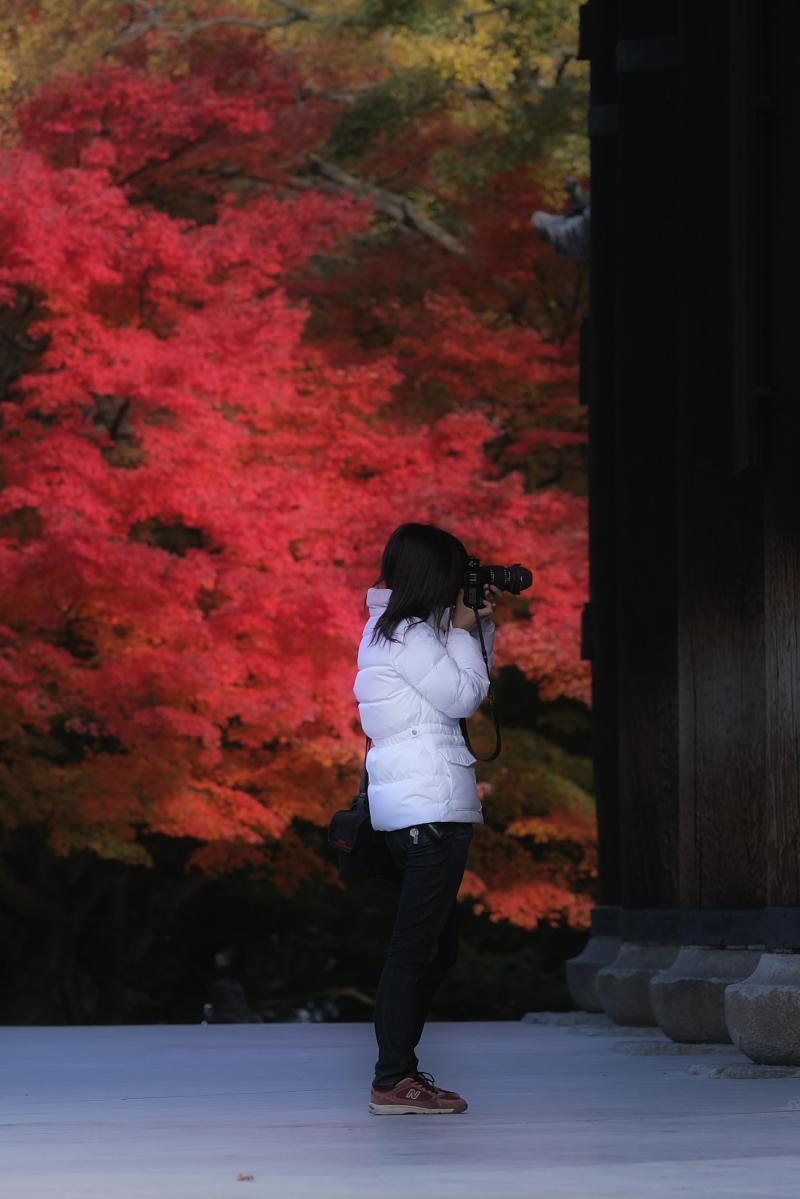 京都 南禅寺 2_f0021869_03155.jpg