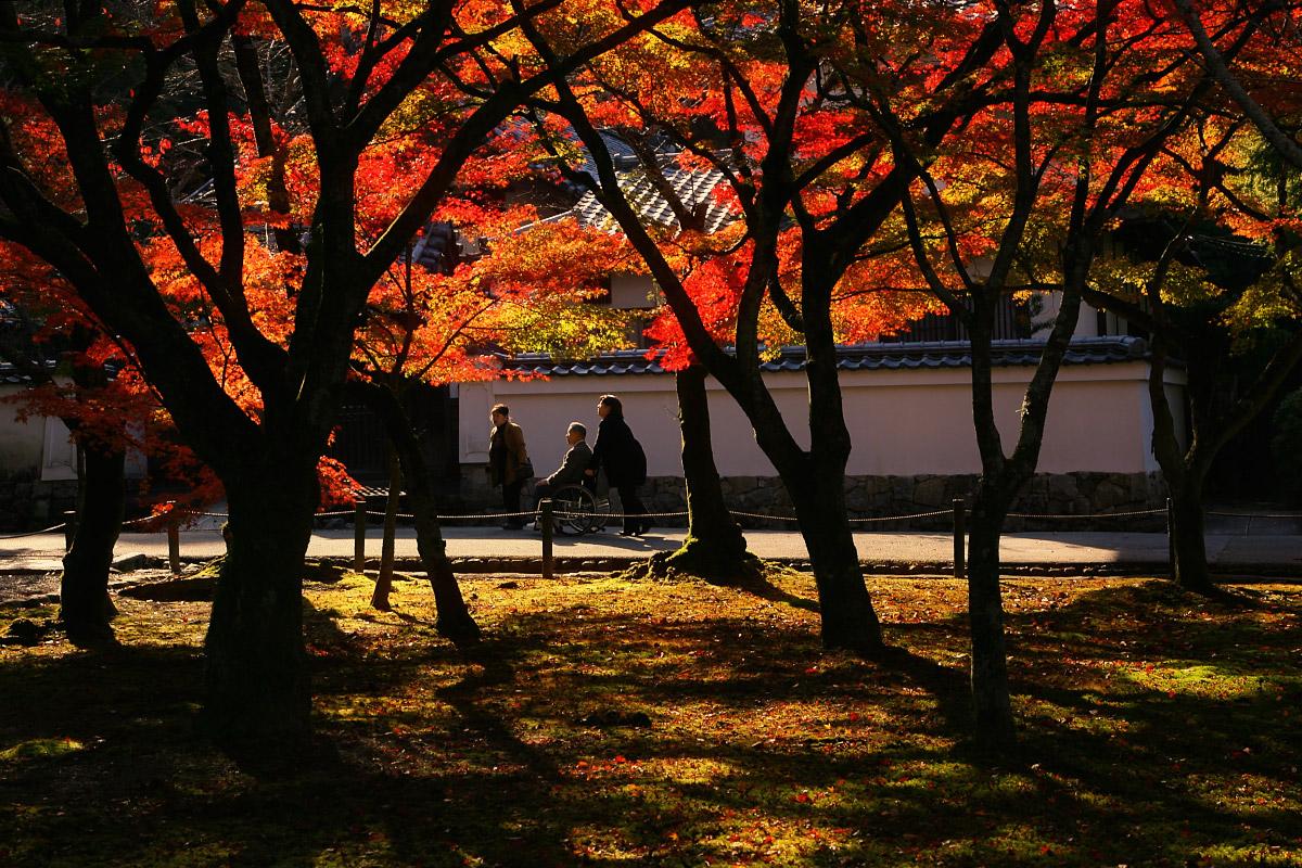 京都 南禅寺 3_f0021869_21405261.jpg