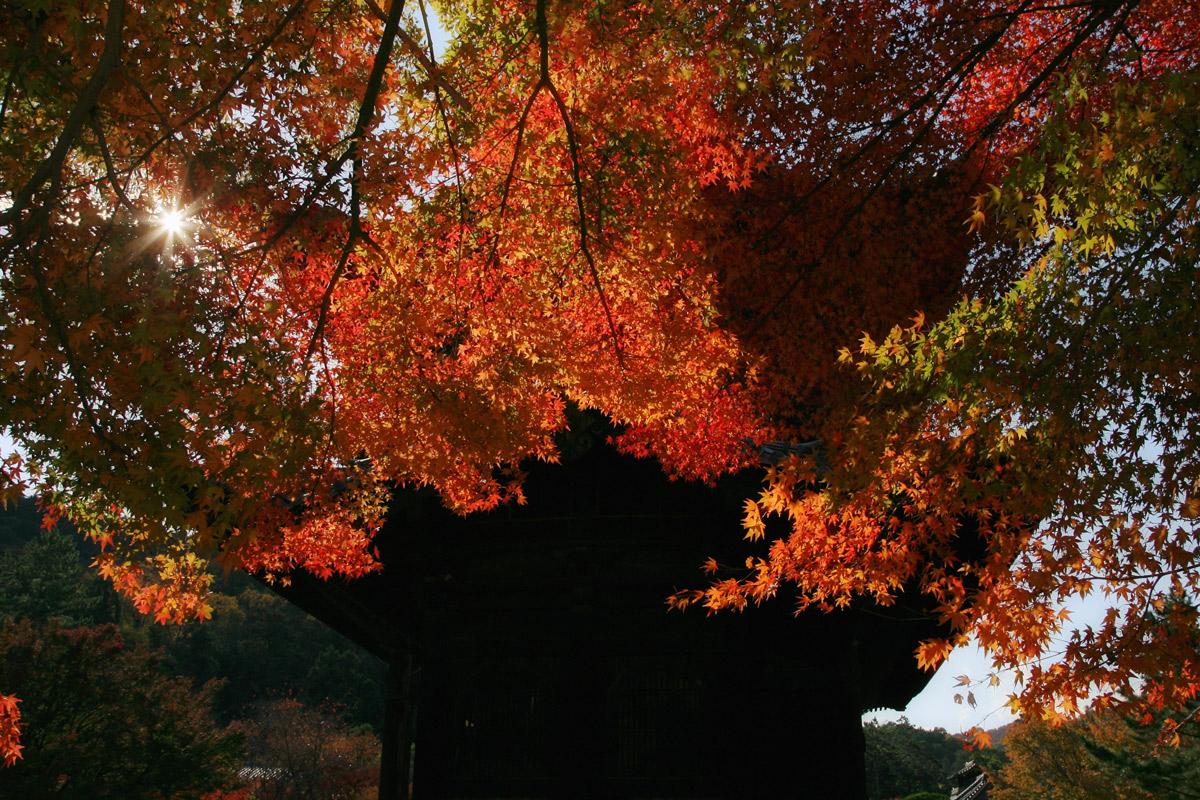 京都 南禅寺 3_f0021869_21412835.jpg