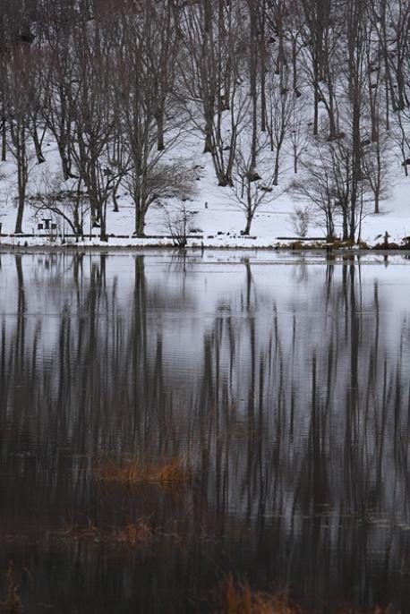会津の初冬を訪ねる<6>・・・2008年11月23~24日_e0143883_6184665.jpg