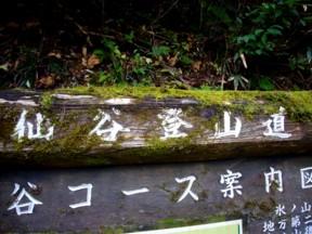 NS @ 氷ノ山_e0115904_191118.jpg