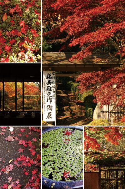 紅葉の中の作陶展_d0023111_16264161.jpg
