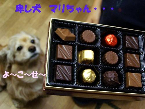 b0067012_0154663.jpg