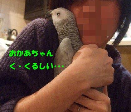 c0133013_16194932.jpg