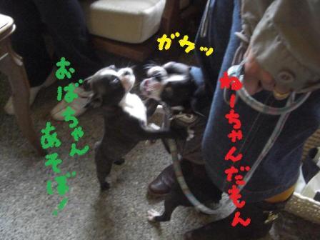 b0137064_18282673.jpg