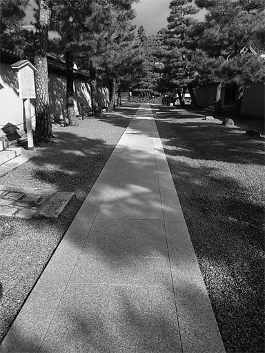 11・25 朝 大徳寺_f0089079_29234.jpg