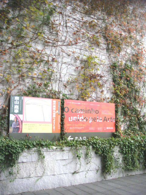 ★兵庫県立美術館『ブラジル×日本 旅が結ぶアート』・・・そして気になる壁!_e0154682_23274092.jpg
