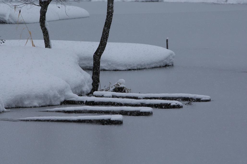 会津の初冬を訪ねる<8>・・・2008年11月23~24日_e0143883_18404591.jpg
