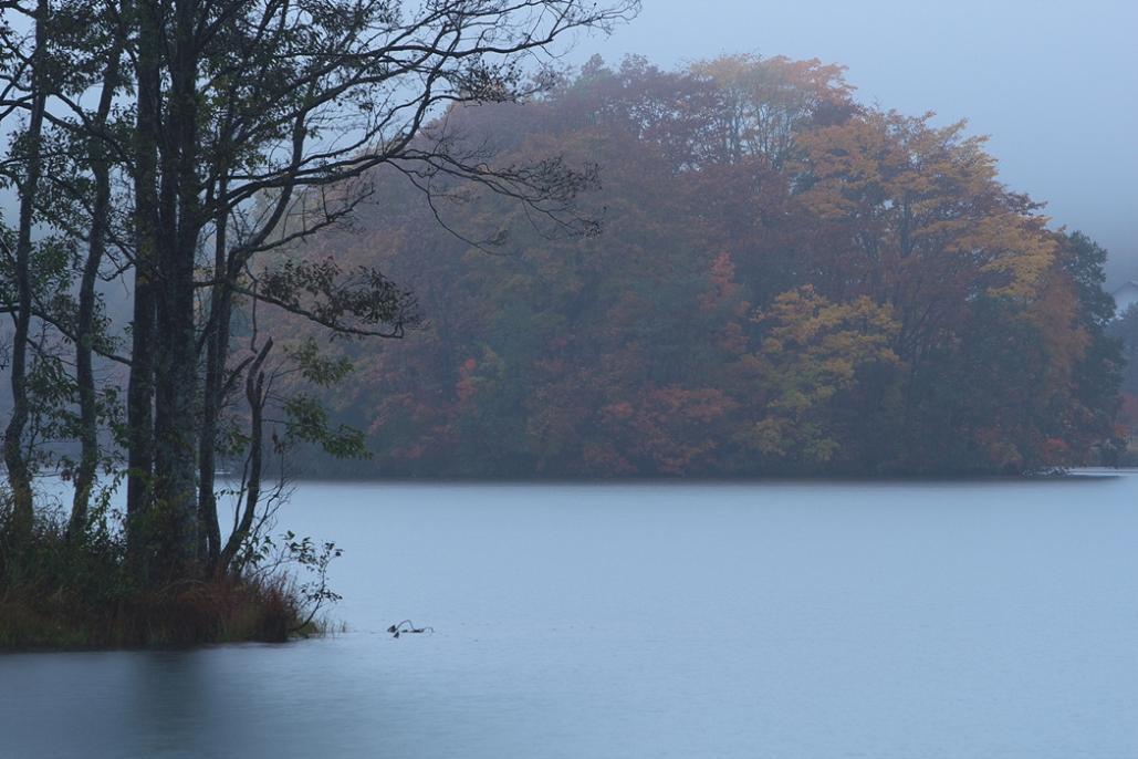 会津の初冬を訪ねる<9>・・・2008年11月23~24日_e0143883_2131828.jpg