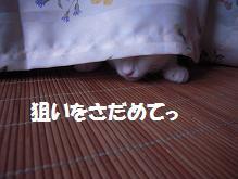c0139488_15244250.jpg