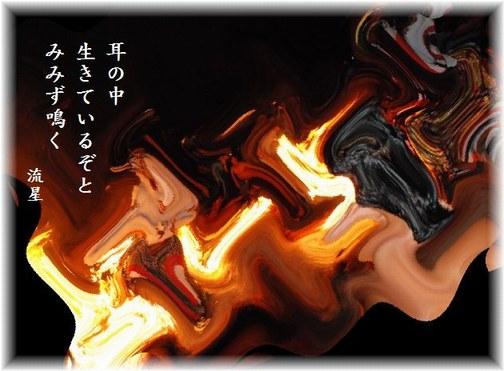 f0053297_2131738.jpg