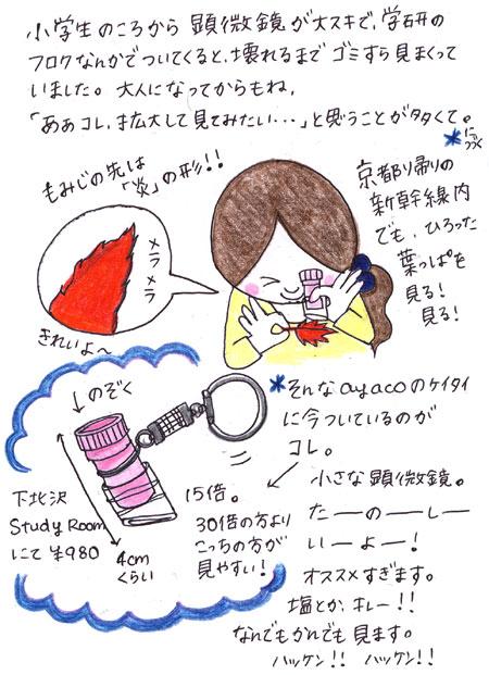 f0079110_1054810.jpg