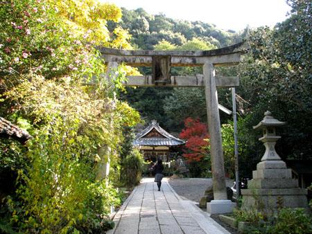紅葉を訪ねて 大豊神社_e0048413_22121524.jpg