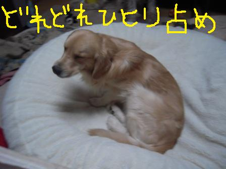 f0176830_17593868.jpg