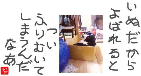 b0093057_235949.jpg