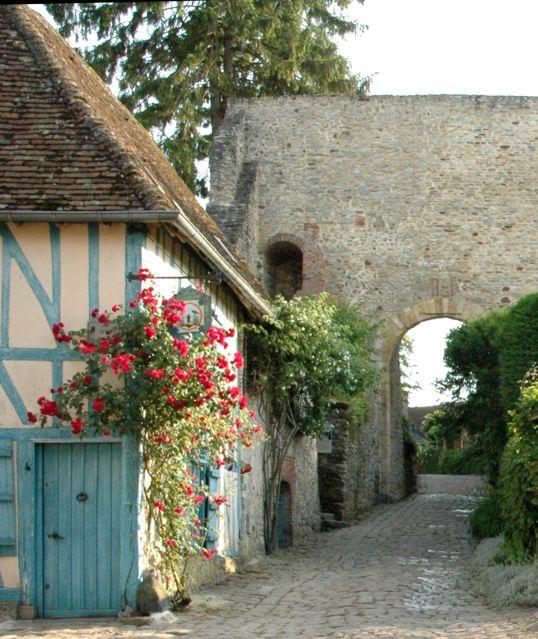 バラの村(フランス)_f0119071_0551599.jpg