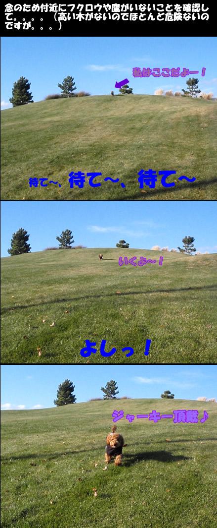 c0164491_1005089.jpg