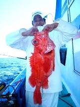 2008年11月30日 日曜日 フラッシャーサビキ五目~アコウダイ船_f0031613_1944256.jpg