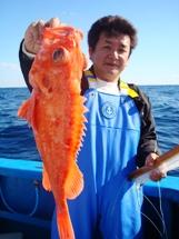 2008年11月30日 日曜日 フラッシャーサビキ五目~アコウダイ船_f0031613_1953556.jpg