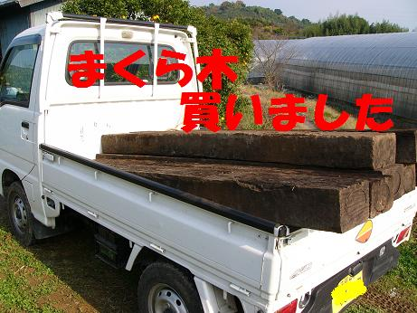 b0150665_23846.jpg