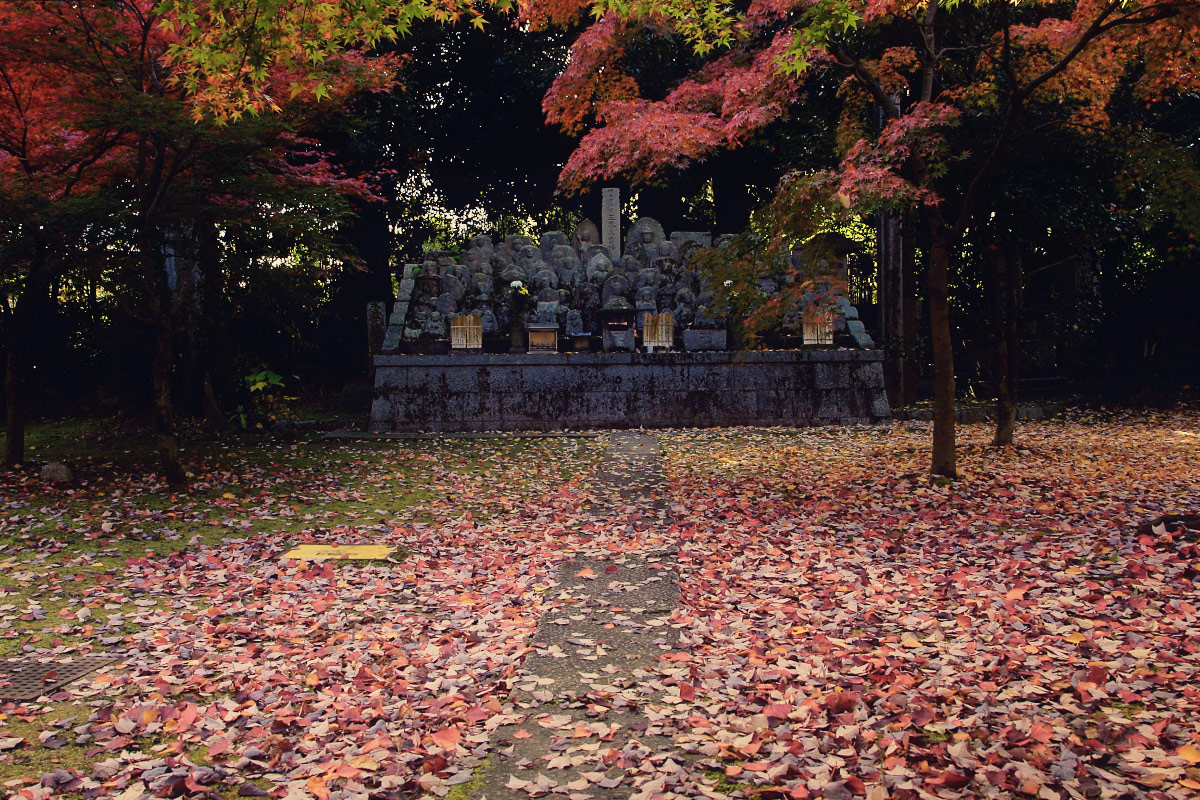 京都 真如堂_f0021869_22403884.jpg