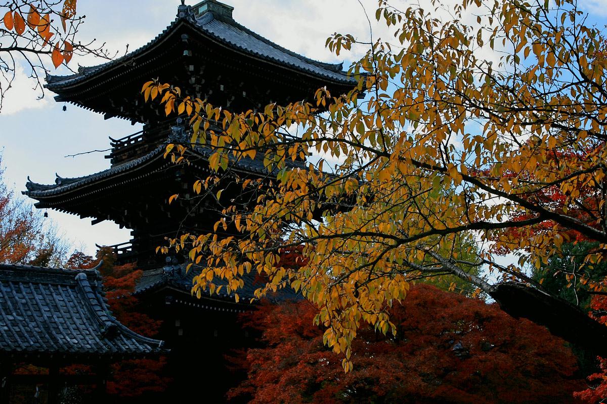 京都 真如堂_f0021869_22474971.jpg