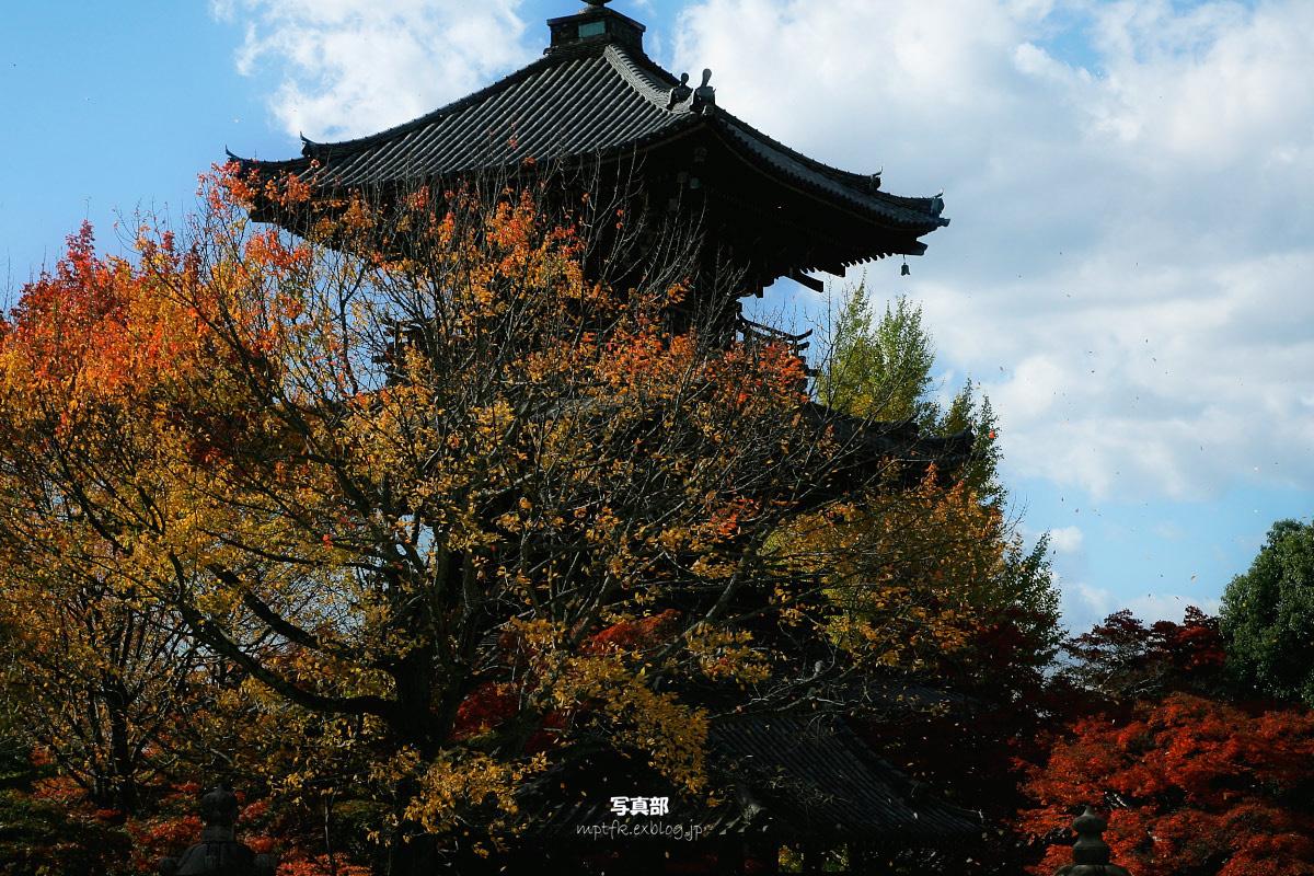 京都 真如堂_f0021869_2304390.jpg