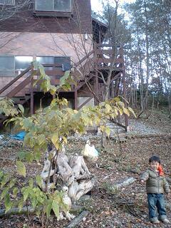 森の中の陶芸家_d0028272_1623913.jpg